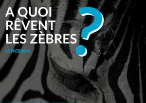 A Quoi Revent Les Zebres : le webinar Vénétis